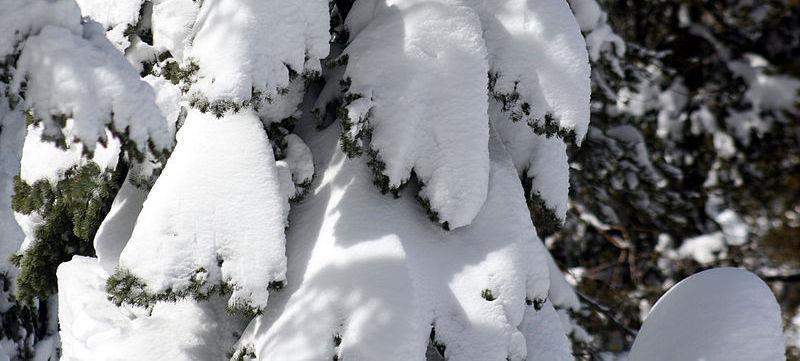 sneeuw en wind